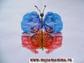 Рисуем бабочку красками