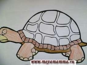 "Аппликация из ниток на картоне для детского сада ""Черепаха"". На картоне рисуем черепаху либо берем картинку из раскраски."