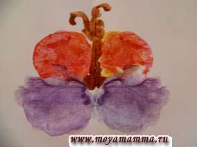 Бабочка.Рисунки красками
