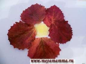Из красных листьев осины сделаны лепестки цветов, серединка у цветочков нарисована желтым мелком, стебли - мелком зеленого цвета, листья у цветов - осиновые и березовые листья зеленого цвета.