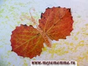 Цветы и бабочки наклеены из маленьких осиновых и березовых листьев.