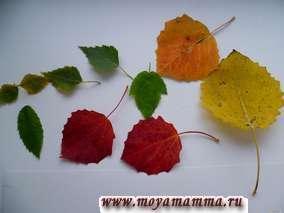 Поделка из осенних листьев деревьев
