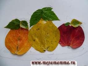 Поделка из осенних листьев деревьев Фрукты. У листьев осины срезаны зубчики перед наклейкой.