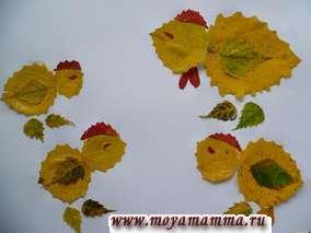 """Поделка """"Курица с цыплятами"""" из желтых листьев осины, зеленых листьев березы. Гребешки - из красных листьев осины"""