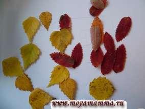 Поделка из осенних листьев листьев рябины, березы, осины