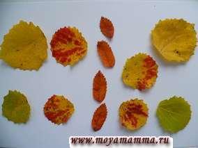 Из желтых, красно-желтых, зеленых листьев оформлены крылья бабочки. Тельце бабочки и голова сделаны из листьев рябины.
