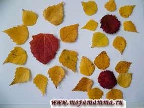 Лепестки подсолнухов сделаны из желтых листьев березы. Серединки подсолнухов - из красных осиновых листьев. Листья подсолнуха - из зеленых листьев осины и березы.