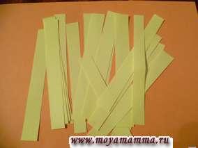 Полоски бумаги. Заготовки для изготовления цветов