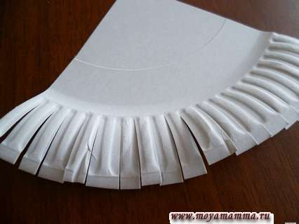 разрезы края тарелки