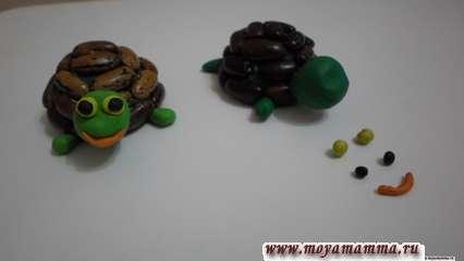 Глазки и ротик черепахи