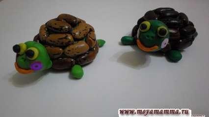 Черепаха из пластилина и фасоли