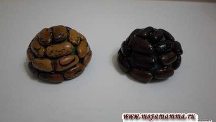 Панцирь черепахи из пластилина и фасоли