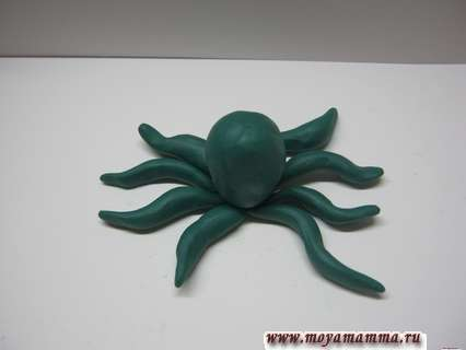 Лепка осьминога из мягкого пластилина