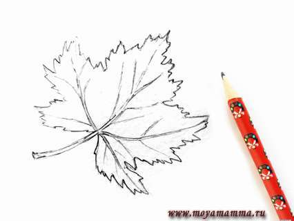 рисунок кленового листа