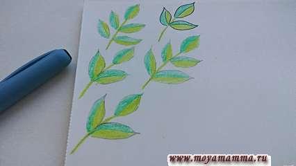 Разукрасьте листики зеленым пигментом, используя пастель или краски