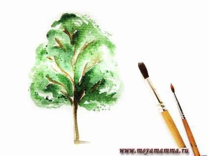 Ствол дерева и веточки