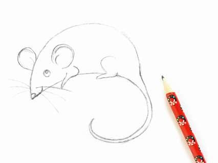 лапки мышки, носик и усики