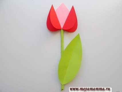 Тюльпан. Букет тюльпанов из бумаги