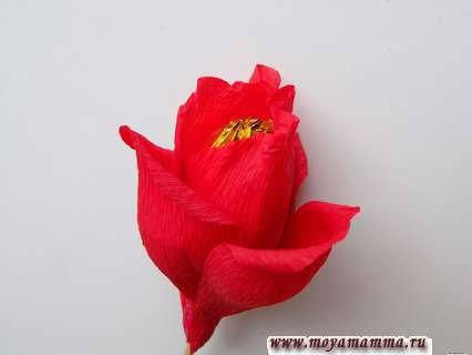 Как сделать розу из бумаги с конфетой. Оклеивание первого ряда лепестками.