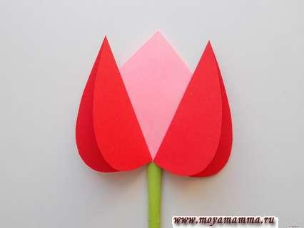 Приклеивание тюльпана. Букет тюльпанов из бумаги