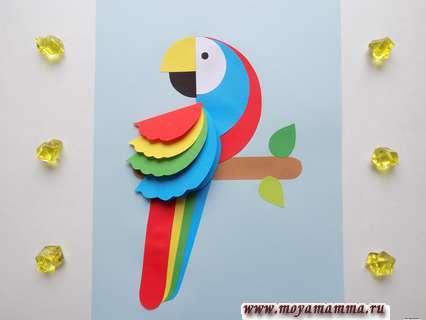Как сделать объемную аппликацию с попугаем из бумаги