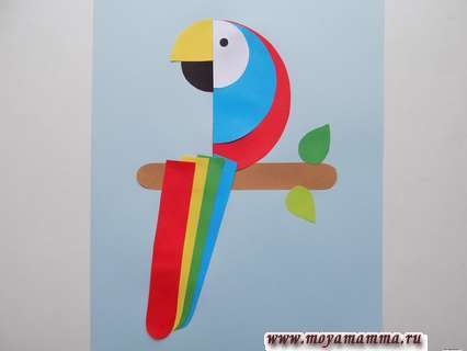 Аппликация попугай. Приклеивание хвоста