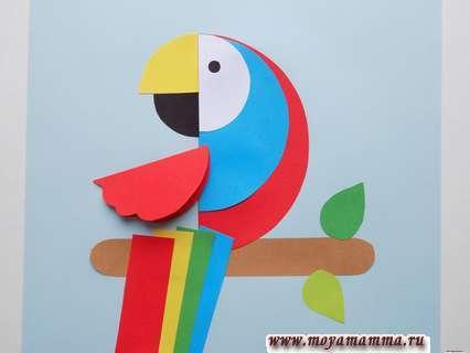 Аппликация попугай. Приклеивание красной заготовки