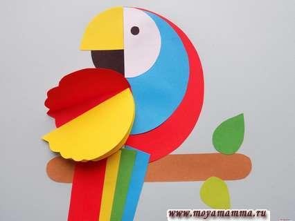 Аппликация попугай. Приклеивание желтой заготовки