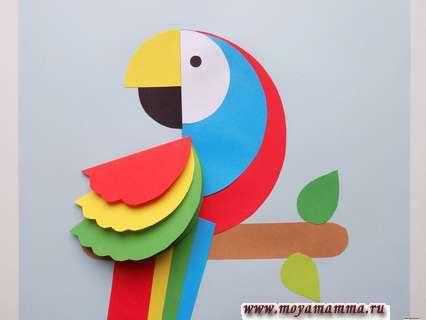 Аппликация попугай. Приклеивание зеленой заготовки