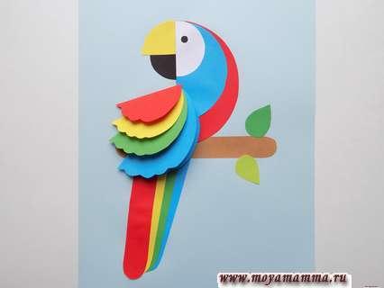 аппликация попугай