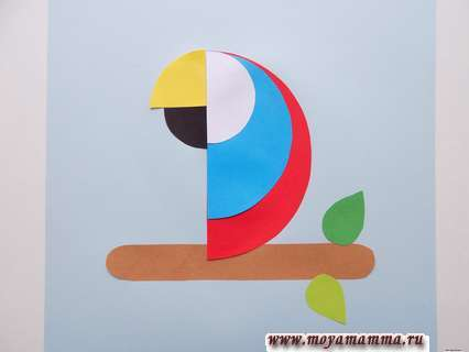Аппликация попугай. Четвертинки круга черного и желтого цвета