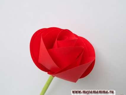 Как сделать розу из цветной бумаги. Формирование розы