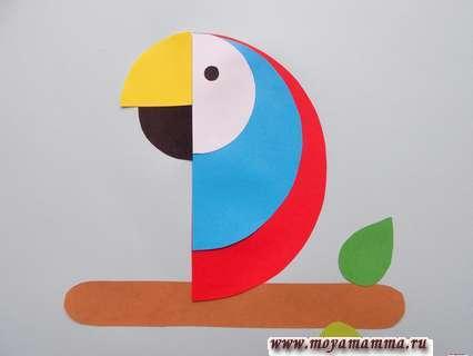 Аппликация попугай. Маленький кружок для глаза