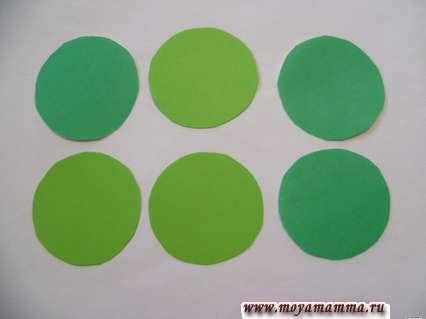 Зеленые кружочки