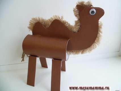 Верблюд с другой стороны