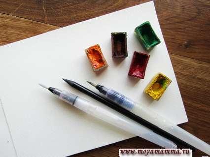 Материалы для рисования кактуса