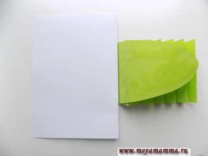 Вкладывание белого листа