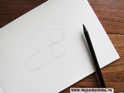 Рисуем два круга небольшого размера, которые соединяем двумя горизонтальными линиями.