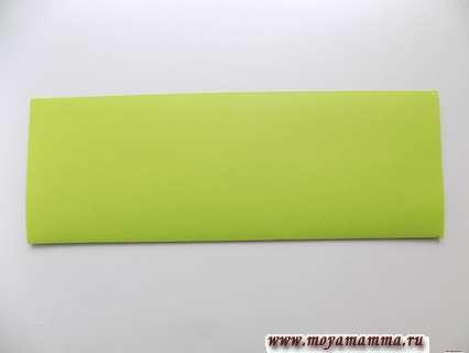 лист салатового цвета складываем пополам вдоль