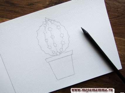 Прорисовывание кактуса