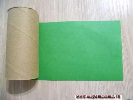 Картонная втулка и зеленая бумага