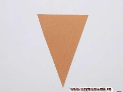 Коричневый треугольник.