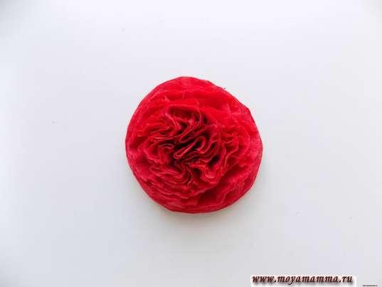 Аппликация снегирь. Пышный красный цветок
