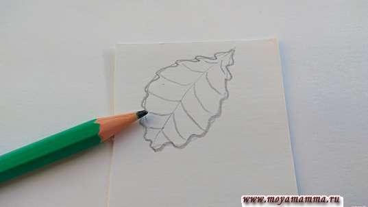 Рисование прожилок листика