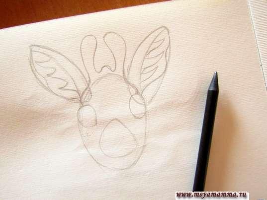 Рожки, глаза, нос жирафа