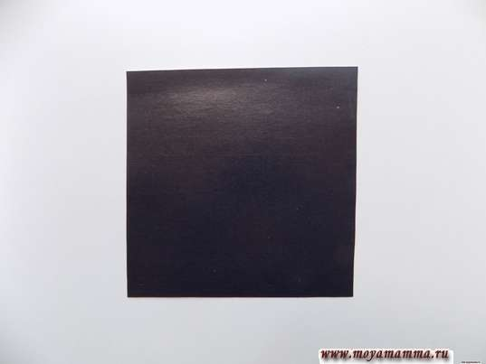 квадрат со стороной 10 см