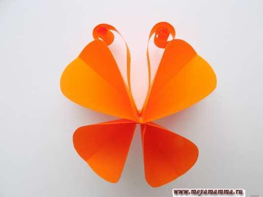Бабочка из кругов