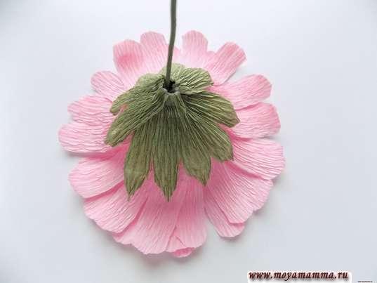 Герберы из гофрированной бумаги. Чашелистик под цветком