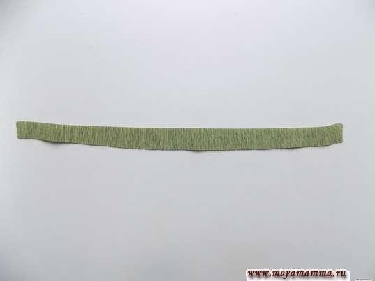 Полоска шириной около 1 см