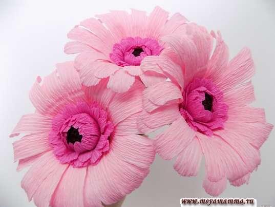 Герберы из гофрированной бумаги. 3 цветка для букета